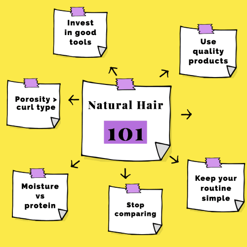an infographic showing natural hair for beginners