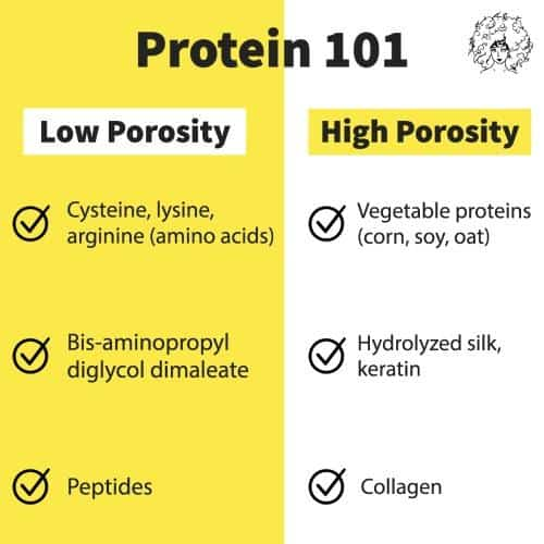 an infographic of the best proteins for natural hair per porosity